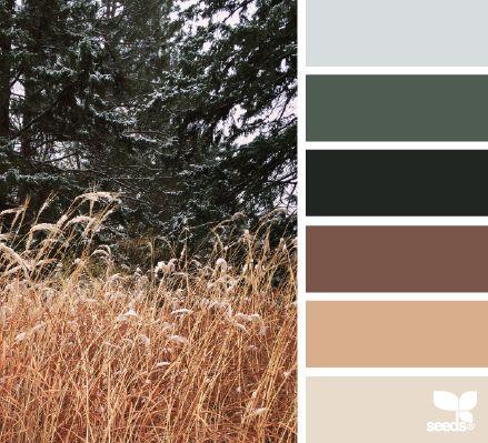 Winter Tones - http://design-seeds.com/index.php/home/entry/winter-tones6