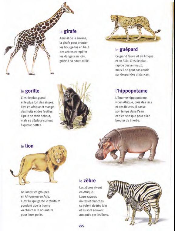 animaux des pays chauds 2 / Larousse des Maternelles