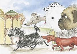 hairy maclary - Lynley Dodd