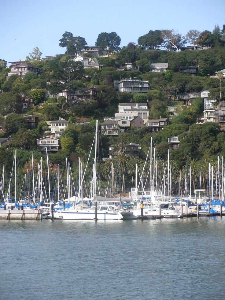Tiburon, California Childhood hangouts...I remember going to some AMAZING cookie place and hiking at Tamalpais!