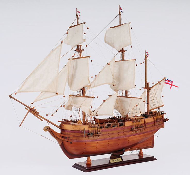 "CaptJimsCargo - Charles Darwin HMS Beagle Wooden Tall Ship Model 32"", (http://www.captjimscargo.com/model-tall-ships/exploration-ships/charles-darwin-hms-beagle-wooden-tall-ship-model-32/) The tall ship model is built exactly to scale as the original Charles Darwin's HMS Beagle was with many details."