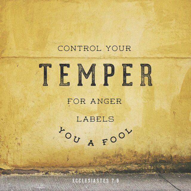 """Don't be too quick to get angry because anger lives in the fool's heart."" ‭‭Ecclesiastes‬ ‭7:9‬ ‭CEB‬‬ http://bible.com/37/ecc.7.9.ceb"
