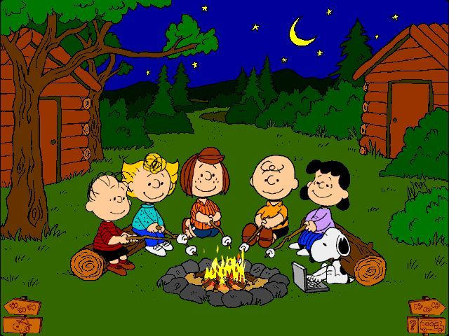 Campfire... However Snoopy brought his laptop! Against campfire rules!