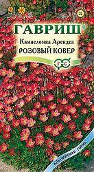 Камнеломка Арендса Розовый ковер