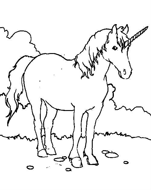 Unicorns Were Silent