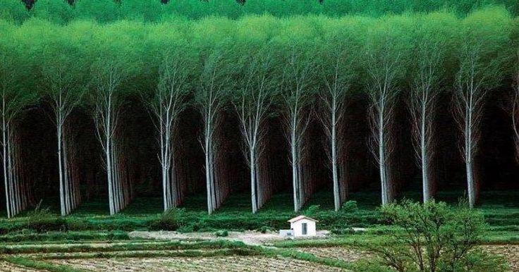 Még hogy az ember a világ közepe! Nézd meg mennyivel hatalmasabb nálunk a természet!
