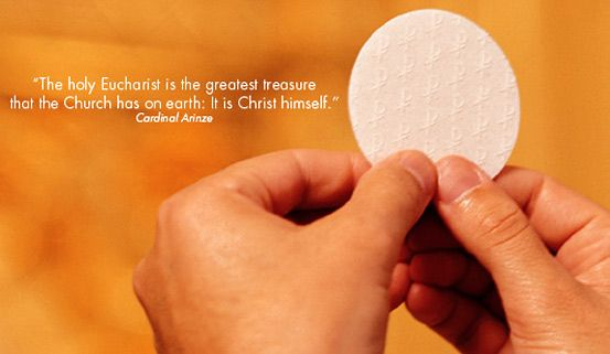 """""""The holy Eucharist is the greatest treasure that the Church has on earth; it is Christ himself."""" -Cardinal Arinze"""