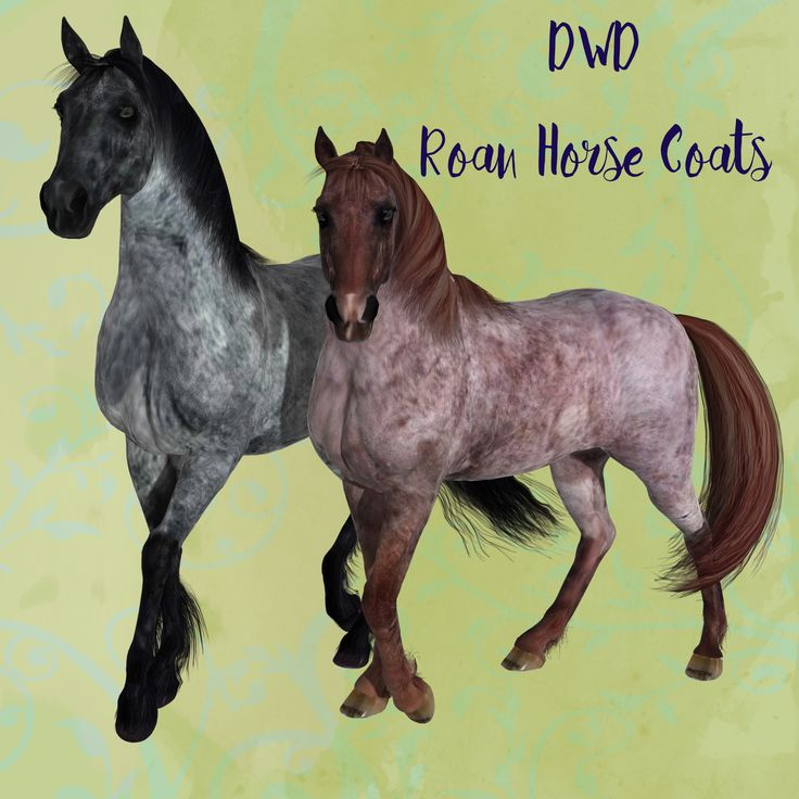 DWD+Roan+Horse+Coats+*Exclusive*+-+$12.50+:+Fantasies+Realm+Market!,+Quality+and+affordability! From our stable to yours and you get 12 coats for your horsies too. Coats: Bay Roan, Bay Roan2, Blue Roan, Blue Roan2, Honey Roan, Honey Roan2, Lilac Roan, Lilac Roan2, Red Roan, Red Roan2, Strawberry Roan, Strawberry Roan2
