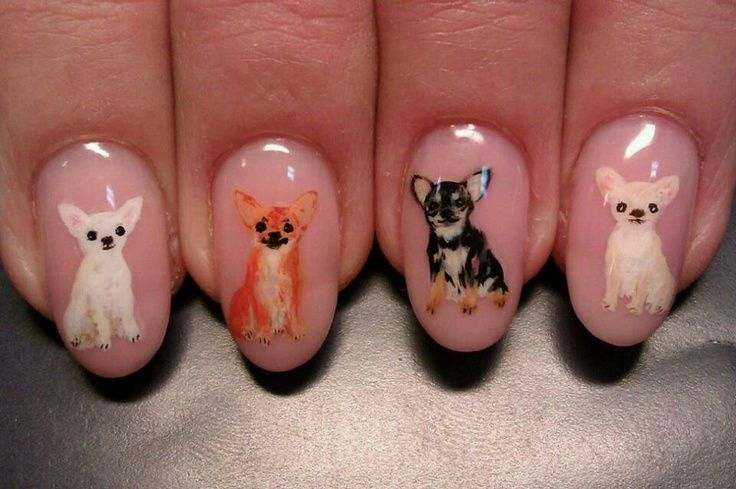 Chihuahua nails...would you wear them?