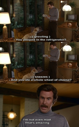 "My favorite Ron Burgundy quote! ""I'm not even mad. that's amazing."""