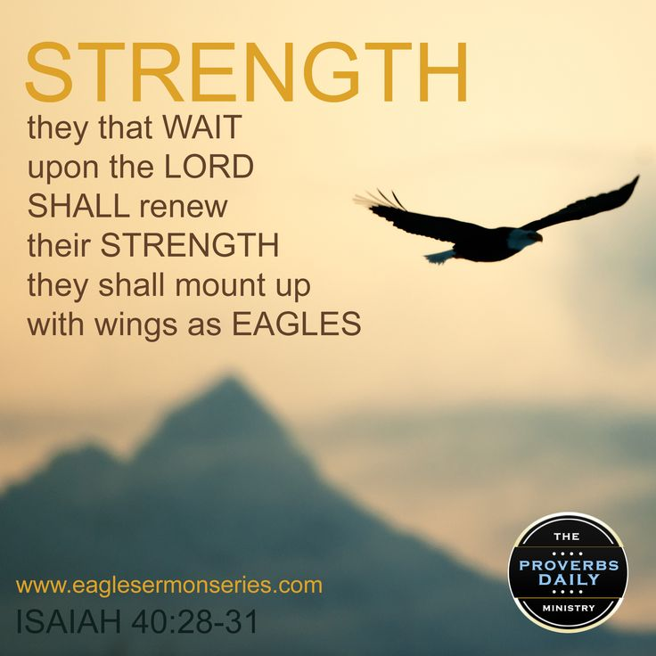 But they that wait upon the Lord shall renew their strength; they shall mount up with wings as eagles; they shall run, and not be weary; and they shall walk, and not faint.  Isaiah 40:31  KJV