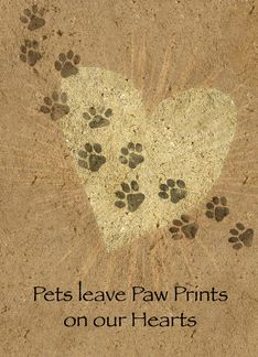 Sympathy card for pet - click on site to view condolence inside card