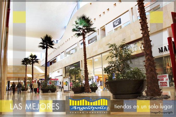 #Contract #Contemporaneo #Tienda #Dibujos #Arboles #Puertas #Vidrio