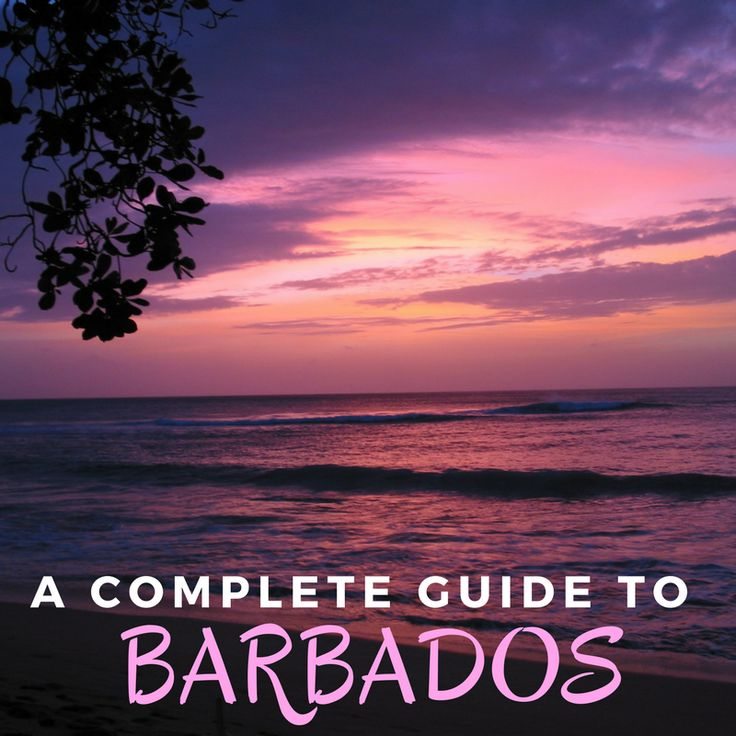 Planning your next cruise to Barbados starts here!
