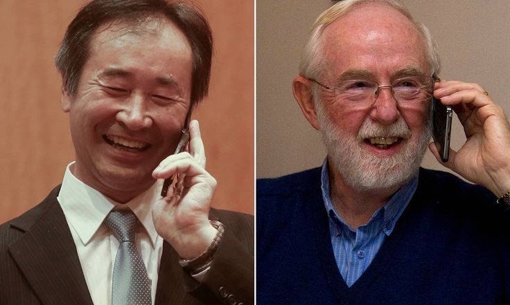 Takaaki Kajita and Arthur McDonald win for discovery of neutrino oscillations, which show that neutrinos have mass