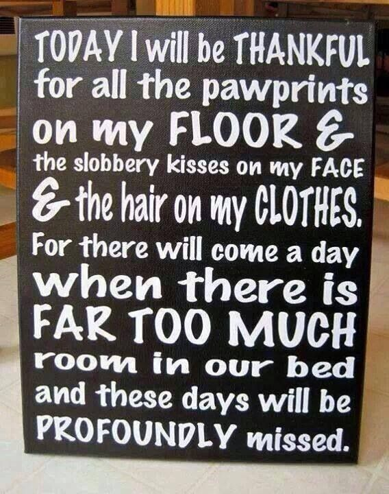 Hee Hee,just like the 'kids' plaque ;-P LOVE IT! Our fur babies>^..^