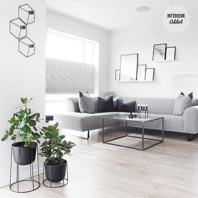 Sunny day in the Netherlands love this clean livingroom by @astridm.interior . . . . . . #interieur #interieurs #interior #interiors #currentdesignsituation #instahome #inspiratie #inspiration #interieurdesign #interieurstyling #interiordesign #housetour #finditstyleit #whitedecor #scandistyle #wonen #slaapkamer #icmimarlik #evdekoru #içmimar #homeinspiration #interior4all #interior123 #interioraddict