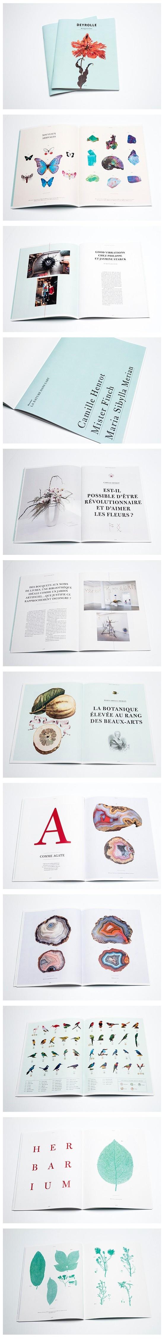 Deyrolle magazine on Behance