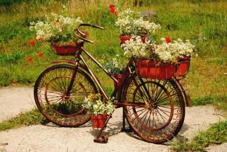 Garden Art Bicycle as a Plant Container