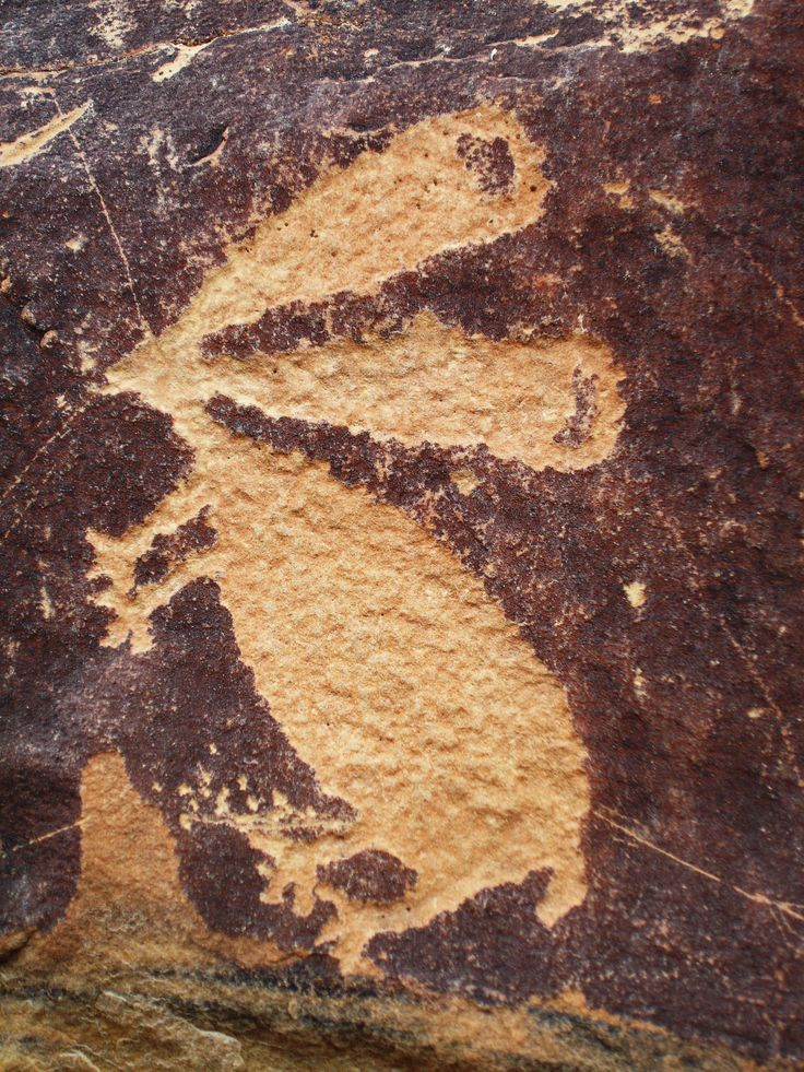 Petroglyphs in Wyoming