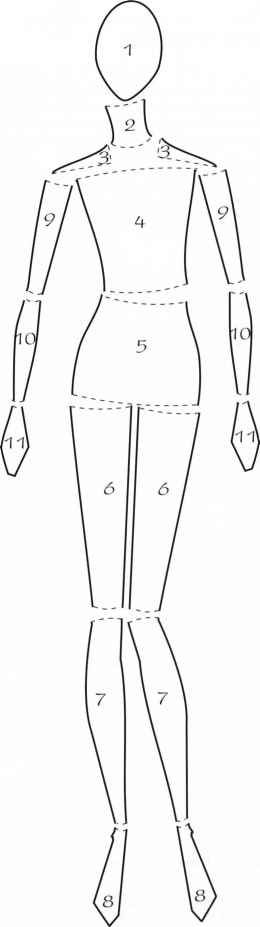 Draw these body parts to familiarize yourself with the components of the figure as it will help you flesh out your oval and triangle templates.