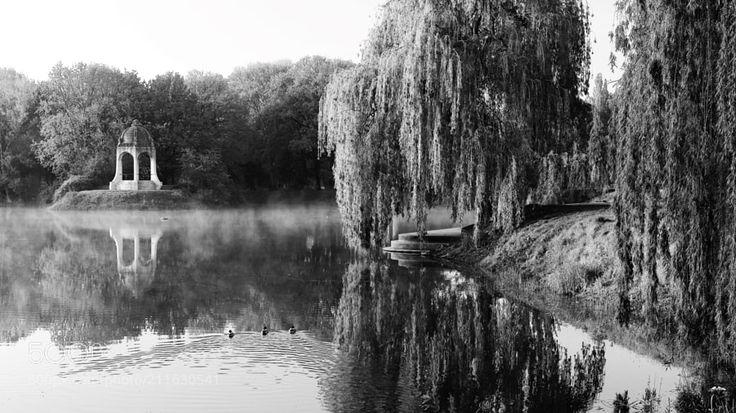 Cold Morning - At Sunrise: Stadtpark Magdeburg