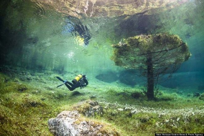 Underwater world in Austria's