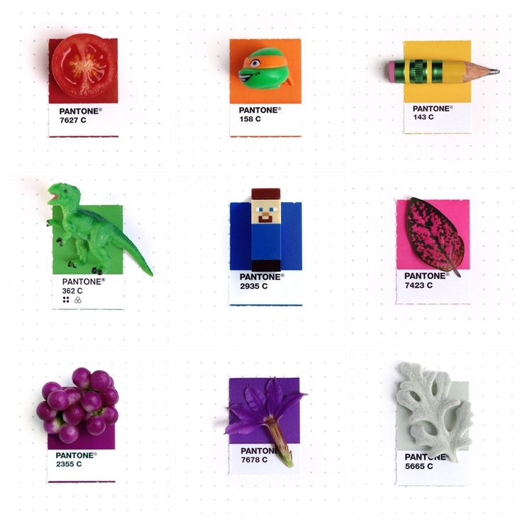 Tiny Objects Meet Their Perfect Pantone Matches | The Creators Project