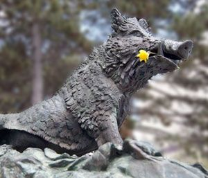 Porcellino is the Faculty of Art's Mascot at the University of Waterloo. This little guy has been kidnapped several times by marauders from across campus. These days you can rub his nose for good luck at exam time!