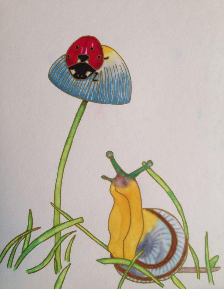 Snail and Ladybug