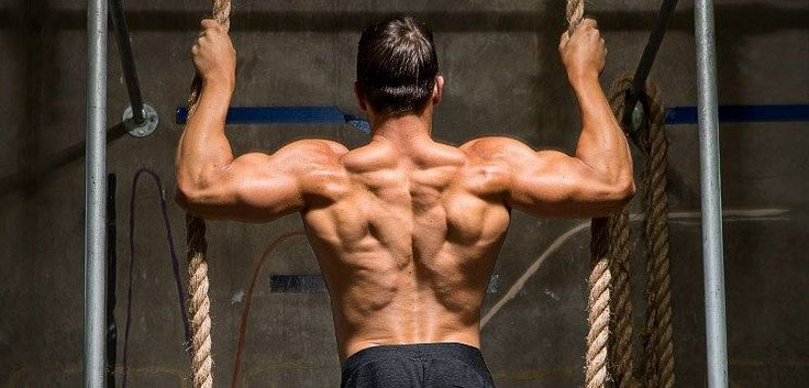 "5 Best Back Workouts For Mass and Ripped Back Workouts Though many bodybuilders and other weightlifters love to train their chest biceps and other ""mirror"" muscles nothing makes a physique more #weightlifting"