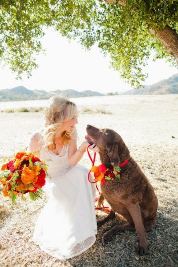 Pets In Wedding: Pictures Ideas, Wedding Parties, Photos Ideas, Wedding Plans, Pet, Weddings, Dogs In Wedding, Flower, My Wedding