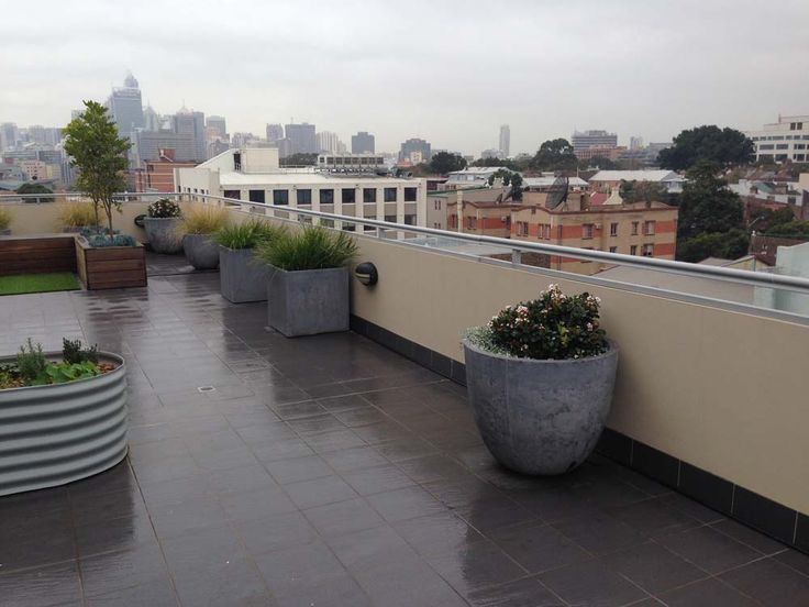 11 best Manly low maintenance balcony images on Pinterest