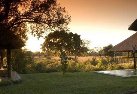 Sabi Sabi Bush Lodge - A lush lawn keeps the wild bush at bay