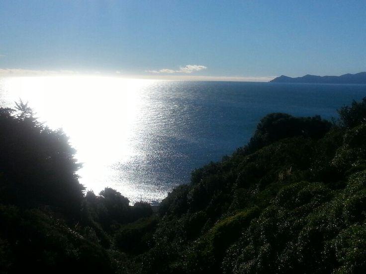Pukerua Bay in the winter.