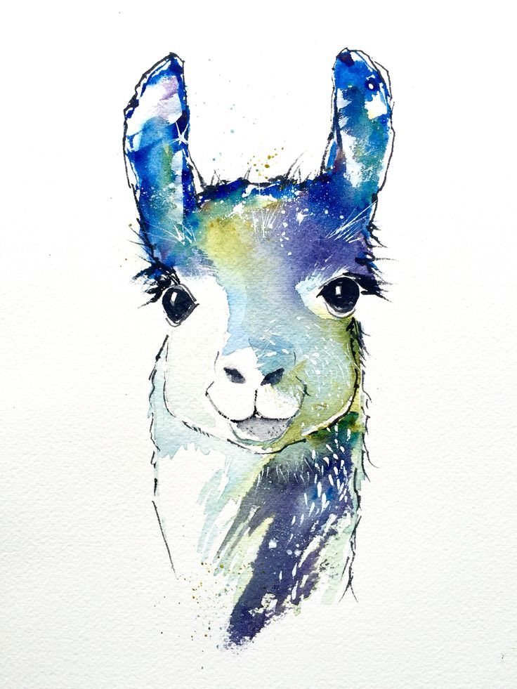 Llama #Watercolor Art Print https://www.etsy.com/listing/231006825/llama-animal-print-watercolor-print