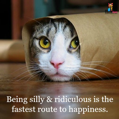 There's a certain happiness in being silly and ridiculous. What's your secret of being happy?