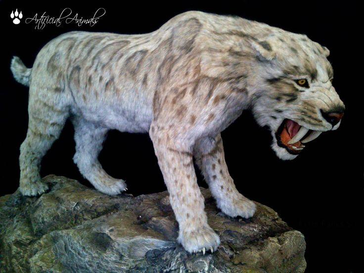 Smilodon fatalis reconstruido artificial en escala 1:1 por Artificial animals