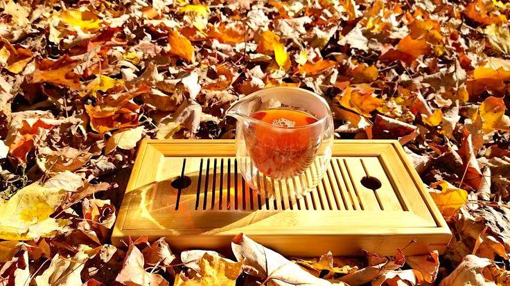 A beautiful tea for a beautiful fall day. Take your tea outside! Teazorean.