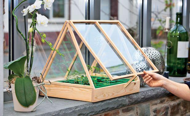die besten 17 ideen zu mini gew chshaus auf pinterest. Black Bedroom Furniture Sets. Home Design Ideas