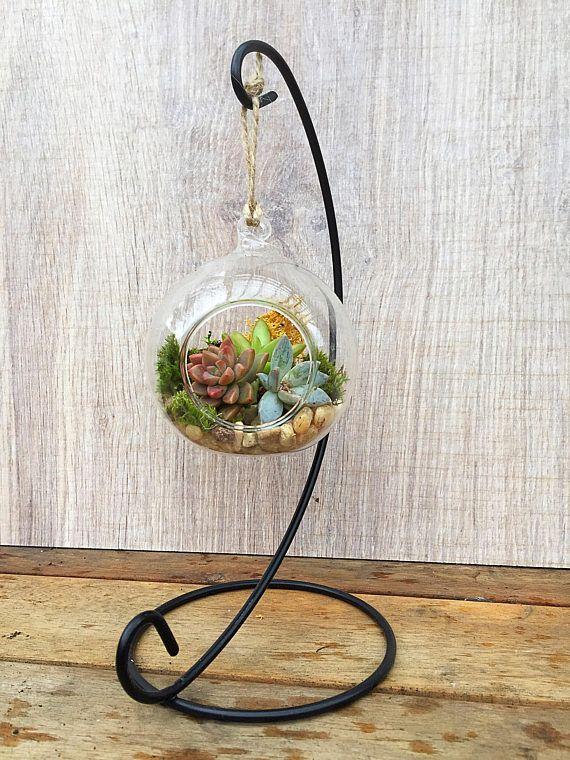 Hanging terrarium/succulent terrarium/hanging