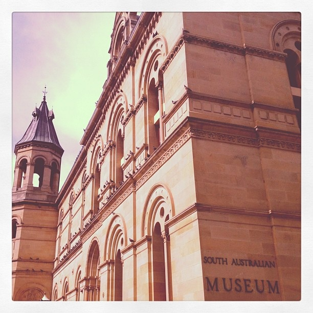 The South Australian Museum. Adelaide, South Australia.