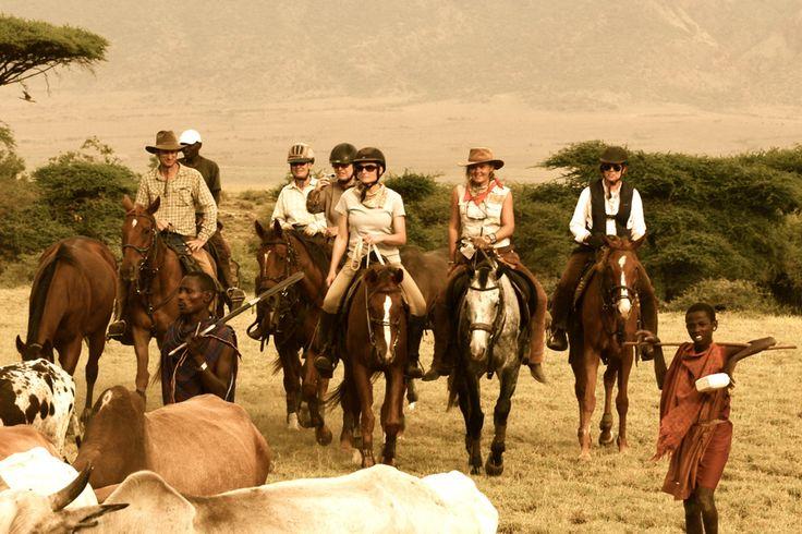 Un condensé du safari à cheval en Tanzanie, du Mont Meru aux pans d'Amboseli, frontière entre la Tanzanie et le Kenya. Pendant votre safari équestre, vous approchez au plus près des troupeaux d'éléphants, buffles, zèbres et antilopes et parcourez la savane immense où les éleveurs masaïs perpétuent leur mode de vie traditionnel.