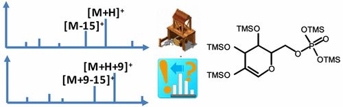 Using Accurate Mass Gas Chromatography–Mass Spectrometry with the MINE Database for Epimetabolite Annotation