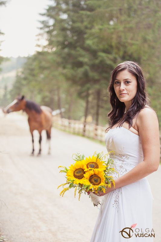 the bride and a horse_images by Olga Vuscan