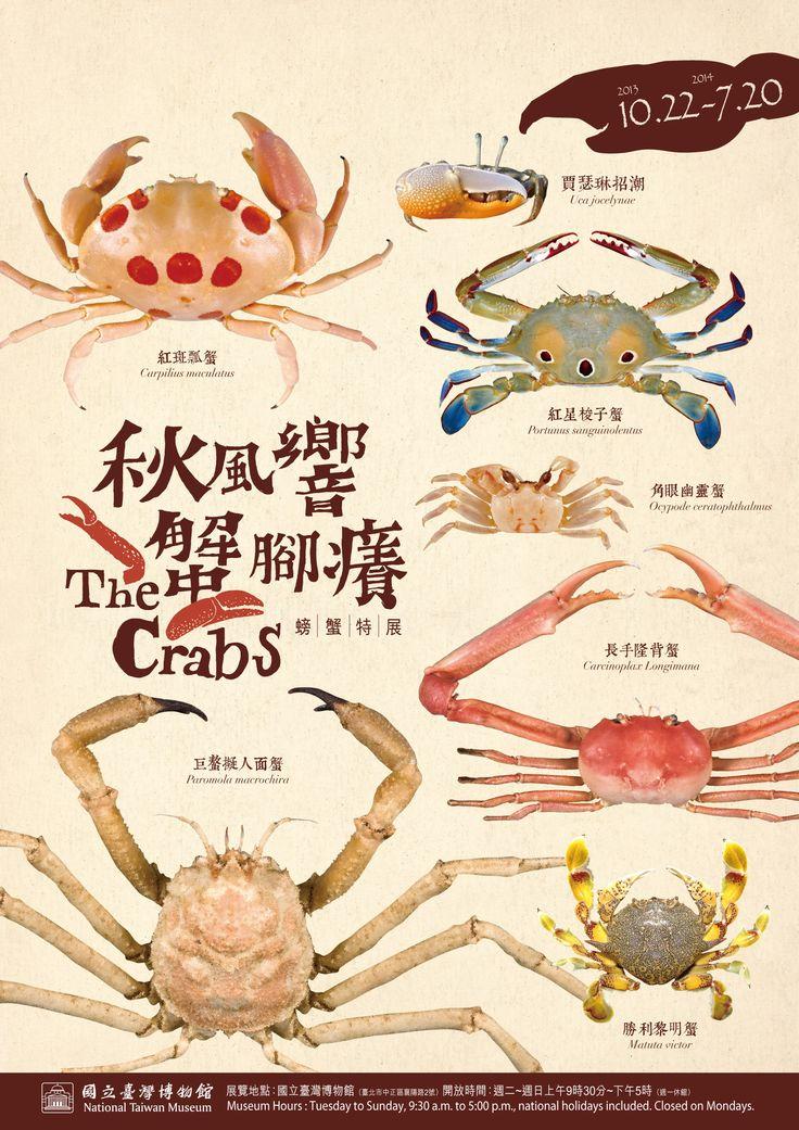 秋風響‧蟹腳癢─螃蟹特展 海報圖片