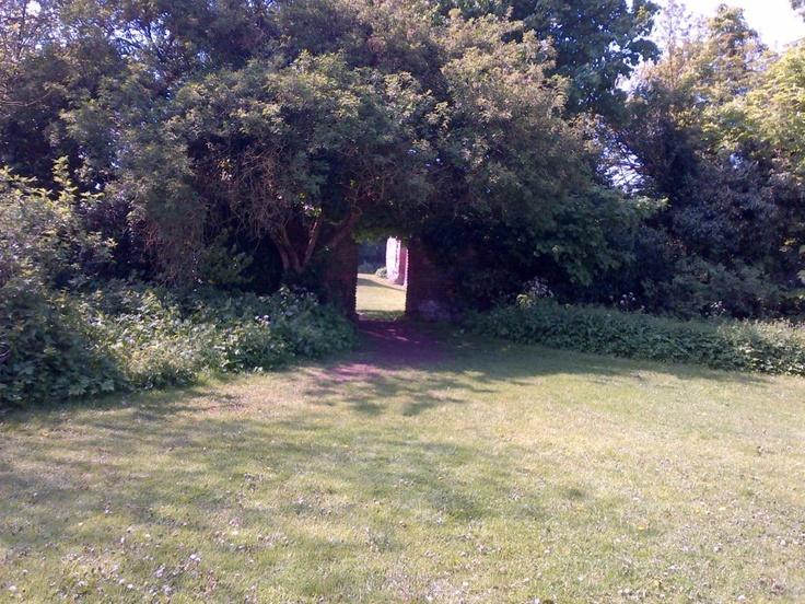 Entering the secret garden, Hertfordshire.
