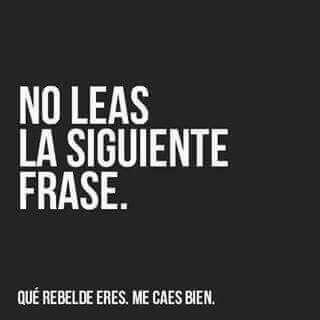 No leas
