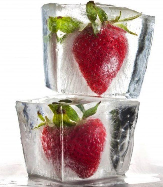 Enfermer des fruits ou des fleurs dans la glace