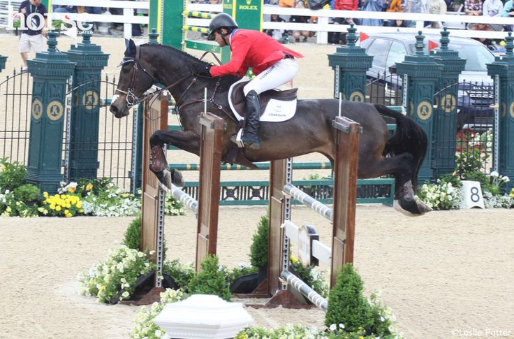 Your Vote Counts for USEF Equestrian of the Year Vote now to decide which equestrian athlete will win.  http://snip.ly/1y9nv